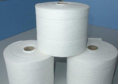 China 100% Polyester Spunbond Non Woven Rolls 9-200gsm 320cm Max Width distributor